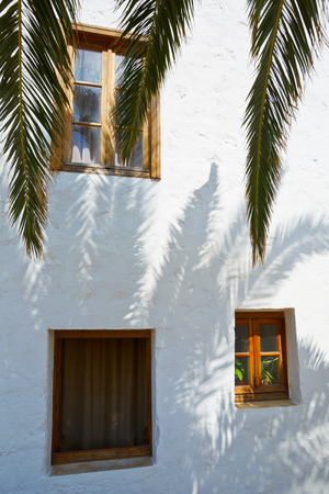 architectonic: Architectonic detail with palm tree leaves and shadows.