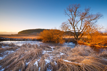 reserve: Nature reserve of river Turiec in Slovakia. Stock Photo