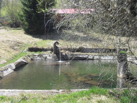 lake in Beskydy Standard-Bild - 100983140