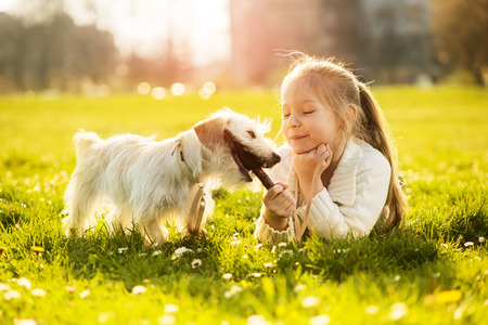 Little girl playing with her puppy dog in the park Stock Photo