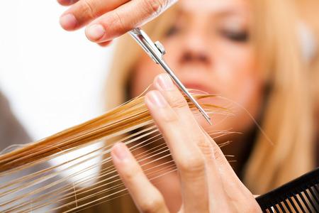 hair treatment: Hairdresser cut hair of a blonde woman  close-up