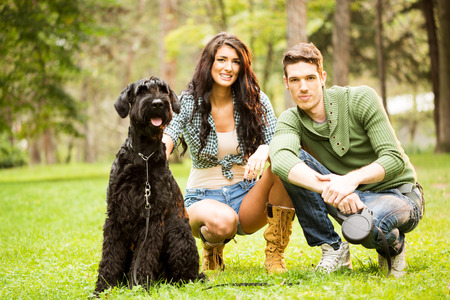 crouches: The young attractive girl crouches in the park with her boyfriend next to her dog, a black giant schnauzer.