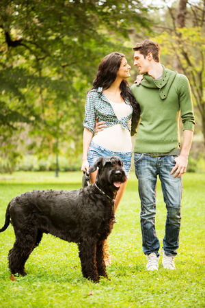 black giant: Young handsome heterosexual couple with a dog, a black giant schnauzer, enjoy a walk through the park. Stock Photo