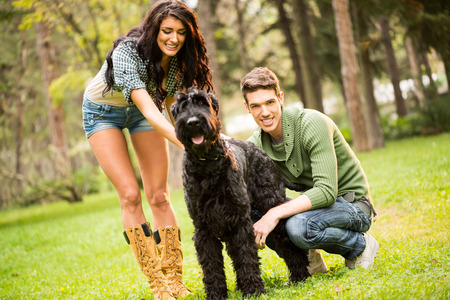 caresses: Young pretty brunette caresses a dog, a large black schnauzer. Beside a dog crouching handsome guy with a smile looking at the camera