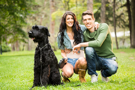 crouches: Young attractive girl crouches in the park with her boyfriend next to the dog, a black giant schnauzer. With a smile looking at the camera.