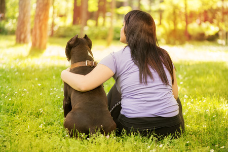 stafford: Beautiful young woman hugging her cute stafford terrier. They sitting on grass in the park and enjoying. Rear view. Stock Photo