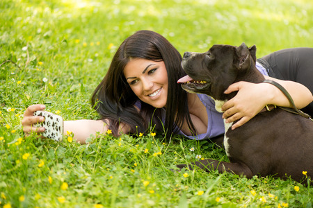 stafford: Beautiful young woman hugging her cute stafford terrier. They lying on grass in the park and taking Self portrait on a smartphone.