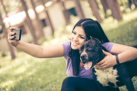 stafford: Beautiful young woman hugging her cute stafford terrier. They sitting on grass in the park and taking Self portrait on a smartphone.