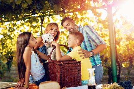 Schöne junge lächelnde vierköpfige Familie mit Hund mit Picknick an einem Weinberg Standard-Bild - 86493055
