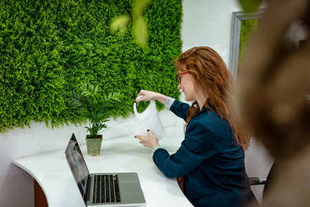 Young business woman working in the office with wall covered of grass. She watering bonsai tree and smiles.