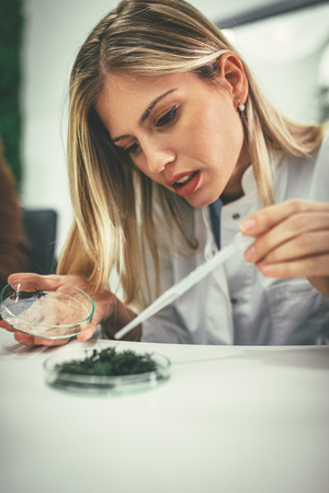 University female biologist analysing the sample of plant in the lab tube, watering it with drops of nutritious fluid.