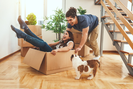 The young happy couple is moving into a new house. They are unpacking boxes with things in their new living room and having fun with their little dog. Stok Fotoğraf