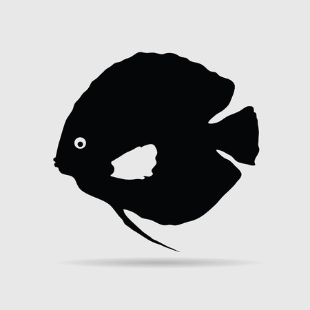 discus: discus fish vector illustration Illustration