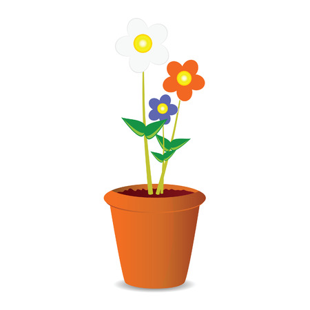 pot flowers vector illustration on a white background Vector