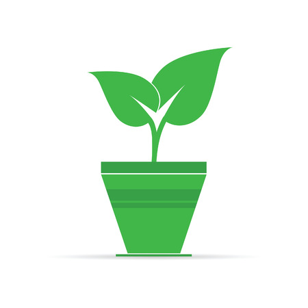 plant pot: plant in pot green icon vector illustration