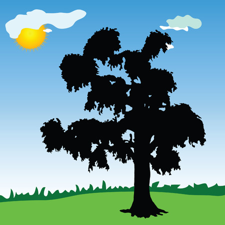 plats: tree black silhouette in the park with blue sky background