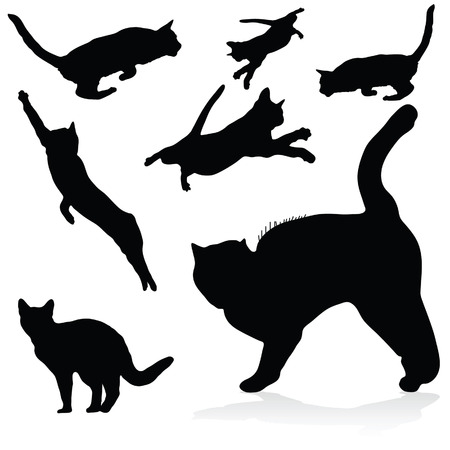 puss: cat black art vector silhouettes on white background Illustration