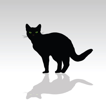 cat with green eye vector illustration on white