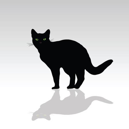 eye green: gato con ilustraci�n vectorial ojo verde sobre fondo blanco