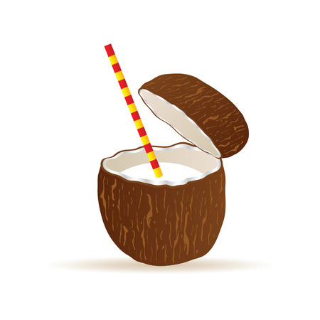 freshens: coconut vector illustration