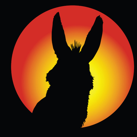 ears donkey: donkey in circle with color background vector illustration Illustration