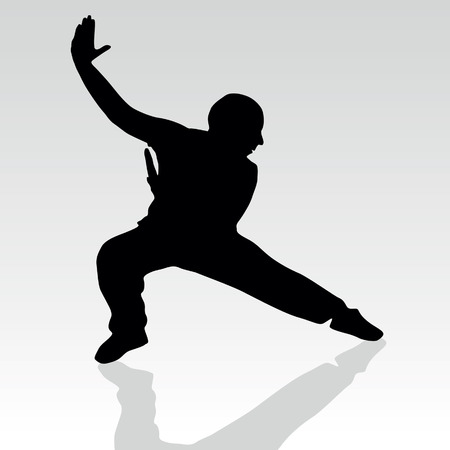 kyokushin: fighter pose one silhouette vector with shadow