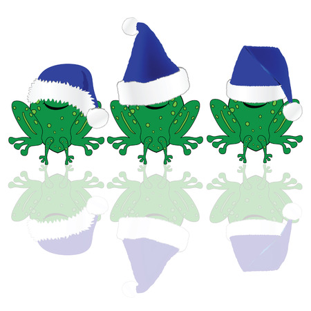 christmas frog: frog with blue christmas hat illustration on white