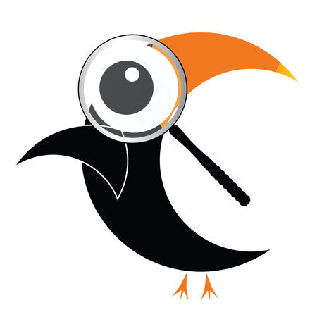 vertebrate: illustration of parrot with big eye on white Illustration