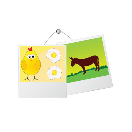 jackass: photo frame with cute donkey and the chicken vector illustration Illustration