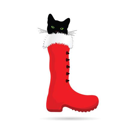 eye green: gato con los ojos verdes y el nuevo vector de arranque a�os Vectores