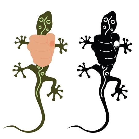 salamandra: salamandra ejemplo colorido en la mano