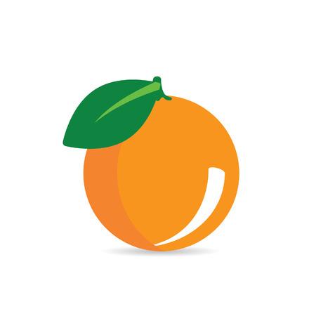 orange fruit vector illustration in colorful