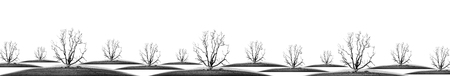 enviroment: die tree isolate - concept picture of bad enviroment in black and white tone Stock Photo