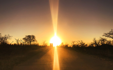 Amazing sunset and sunrise.Car driving back to rest camp on the road in Kruger national pack Stockfoto