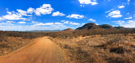 Panorama shot ,Safari dirt road with beautiful blue sky and cloud for game drive in Kruger National park, South Africa