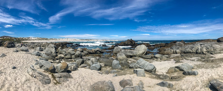 Panorama beautiful beach at west coast national park , cape town south africa