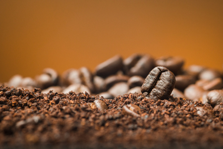 Close up Coffee beans over the cofee powder