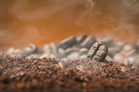 Close up Coffee beans over the cofee powder with smoke Stockfoto