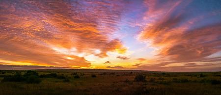 Beautiful Panorama sunset and sunrise at west coast national park , soth africa