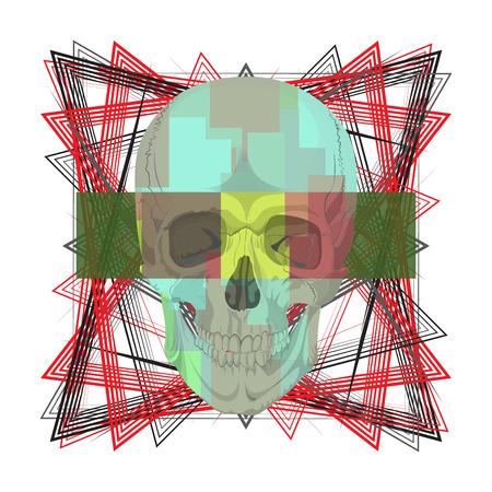 ossa del cranio scheletro umano morto l'illustrazione di anatomia