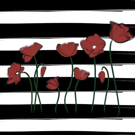 Vector wine red poppy watercolor drawn flowers. Print plant blossom on striped background. Modern cover design illustration