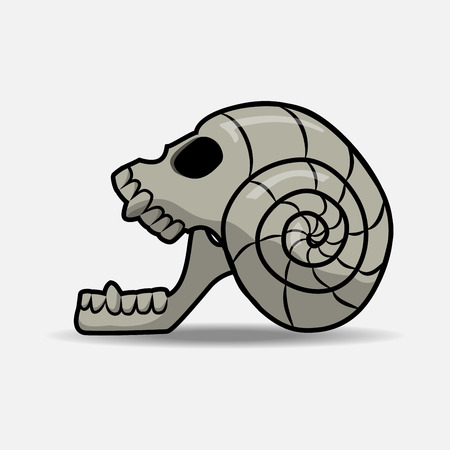 human skull bones skeleton dead