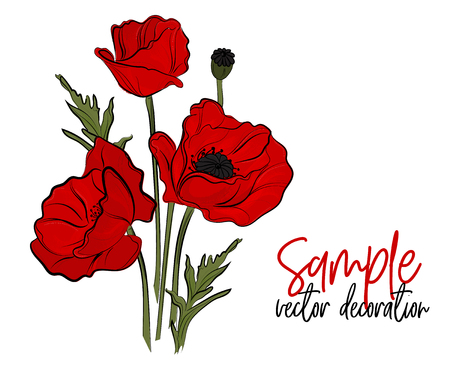 Vector red poppies flowers. Bloom symbol of spring - botany illustration. Opium season holiday plant. Peace symbol picture Vettoriali