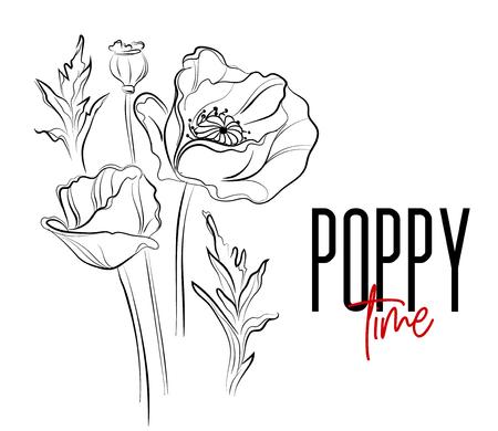 Stampa decorativa di fiori di papavero vettoriale. La natura fiorisce l'illustrazione bianca nera. Poppier fioritura piante estive. Arte botanica