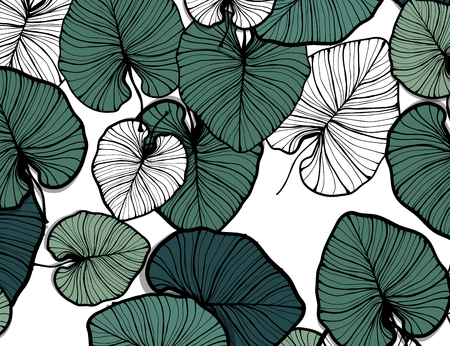 Jungle pattern, hand drawn outline black ink monstera leaves on white background