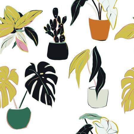 House plants decoration. Home floral pattern illustration. Hand drawn modern natural decoration, houseplants botanical drawing.