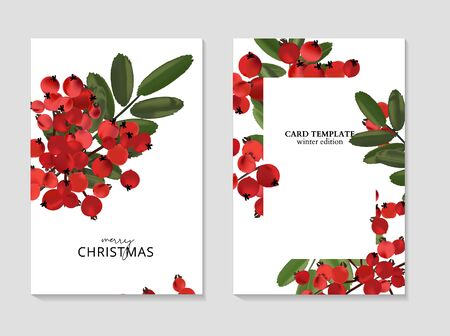 Ash berry greeting Merry Christmas cards, winter seasonal art drawing template. Ashberry vintage branch