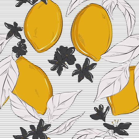 Lemon on striped white black contrast background. Vector hand-drawn fruit pattern with flowers and leaves. Organic botanical pattern. Juice nature minimalistic design .