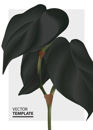 Modern black contrast foliage monstera leaf  summer wedding card. Hand-drawn botany business template, flower leaves jungle nature decoration.