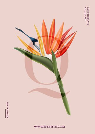 Bird of paradise graphic card design. Modern 3d realistic vector poster with exotic flowers vertical graphics, jungle botanical art for banner, advertising, invitation. Summer flower bloom on pastel background. Ilustração